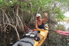 … durch die Mangroven