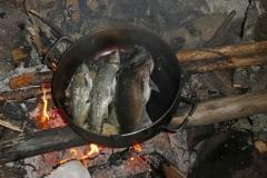 Fishing-12